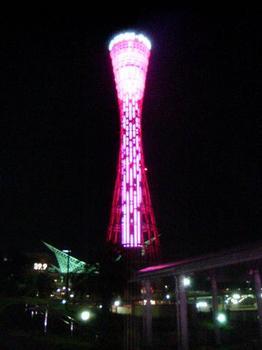 ピンクタワー.JPG